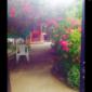 Отдых на Кипарисовой аллее 5 1