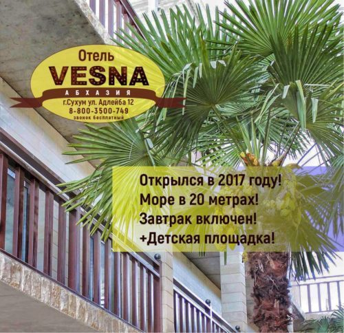 Абхазия новый Отель «ВЕСНА»