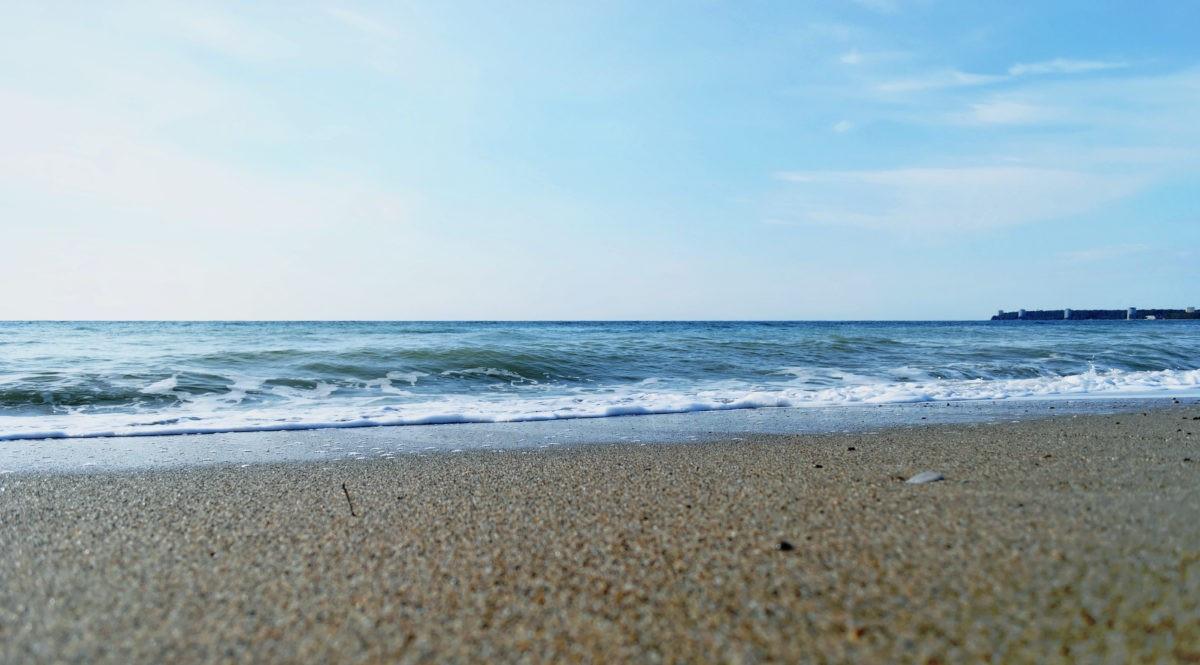 Отдых в Абхазии - частные бесплатные объявления