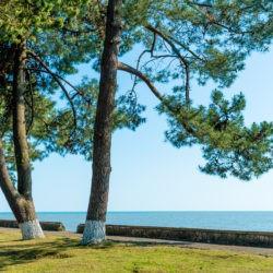 Пансионаты, отели и гостиницы в Лдзаа (Лидзава) - все включено, с лечением