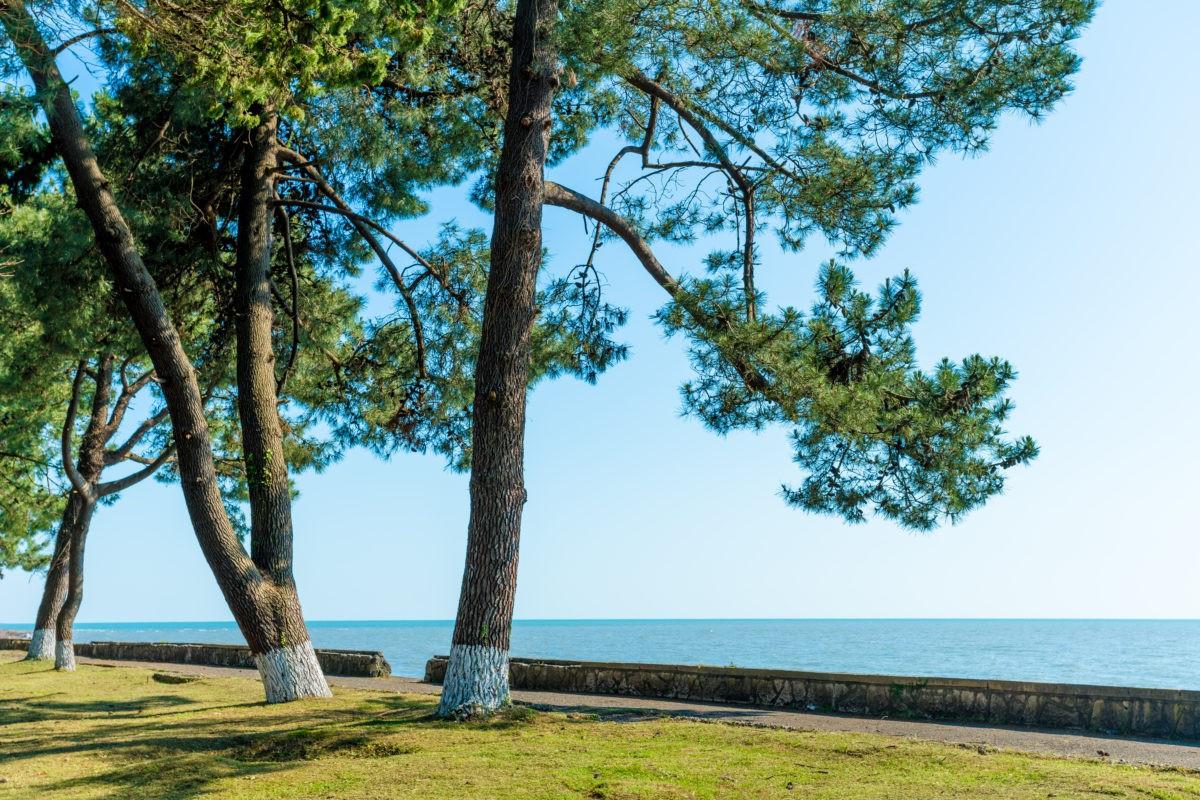 Отдых в Лдзаа 2020 - цены за все включено, на берегу моря, с детьми